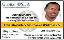 Global OSHA wallet card