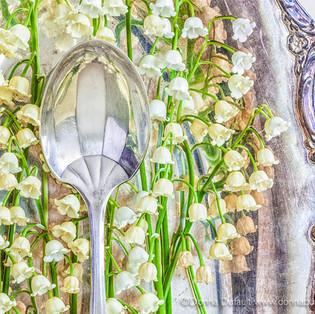 Donna Dufault Worn Spoon Projectit FS3.jpg