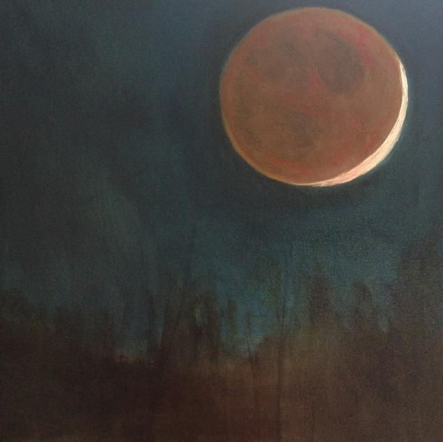 Cynthia WoerleEclipse Super Moon