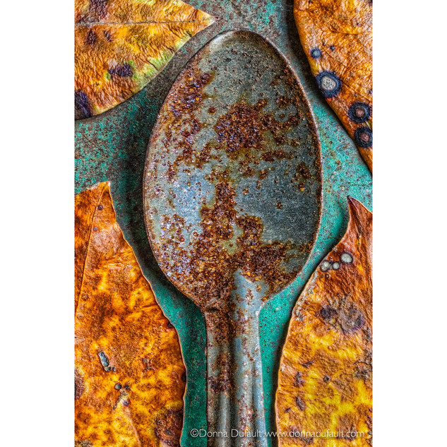 Donna Dufault Worn Spoon Project