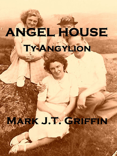 Angel House by Mark J.T. Griffin