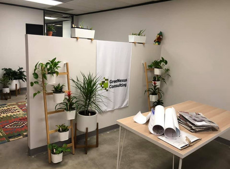 GreeNexus is Celebrating Our First Office!