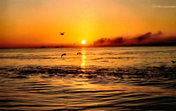 nascer-do-sol1.jpg