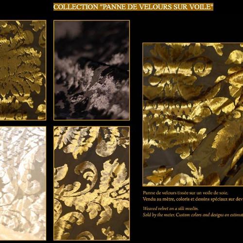 COLLECTION PANNE DE VELOURS SUR VOILE.jp
