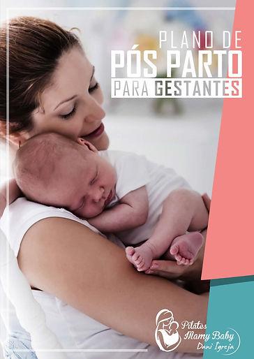 Ficha Plano de Pos Parto Gestantes Guia.