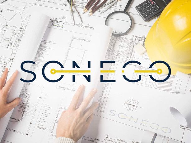 Sonego - consulting management