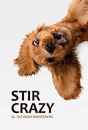 Stir Crazy.jpg