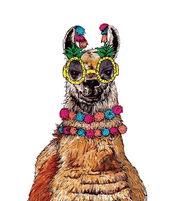 Party Animal Llama illustration