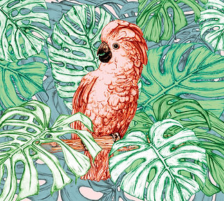 Club Tropicana cockatoo illustration and monstera leaves