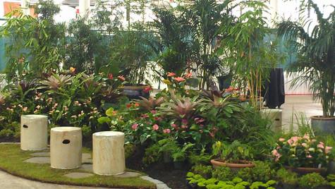 LICH Splash Garden at NBC.jpg