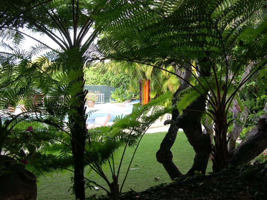 0 from patio DSCN3086.jpg