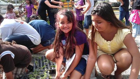 Waianae Girls purple and yellow Aeae option 3.jpg