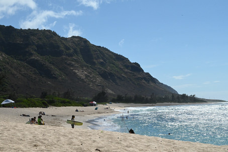 SUMMER PICNIC - ARMY BEACH, MOKULE'IA - O'AHU