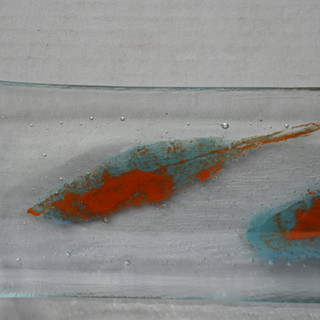 DAY 155 GP Feathers Light Blue and Orange in Plate Close DSC_6730.JPG