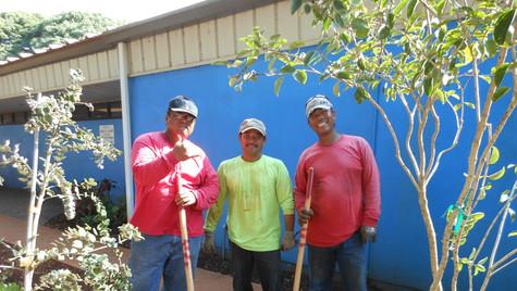 Waianae Green Thumb and Ohia 5.jpg