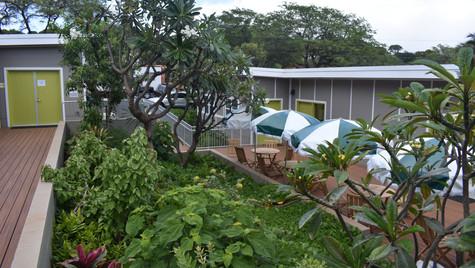 5 HFS Courtyard with Umbrellas.JPG