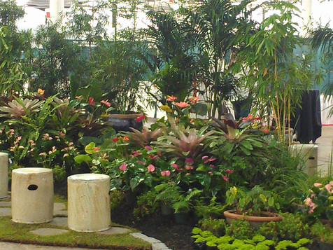 """Splash"" Garden at the 15th Annual LICH Conference"