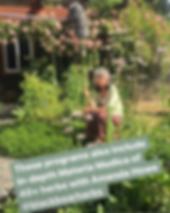 Amanda in Herb Garden Summer 2019.png