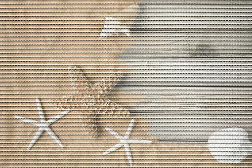 Motivmatte Art.77702 Starfish