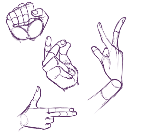 Hands and Arm Studies.png