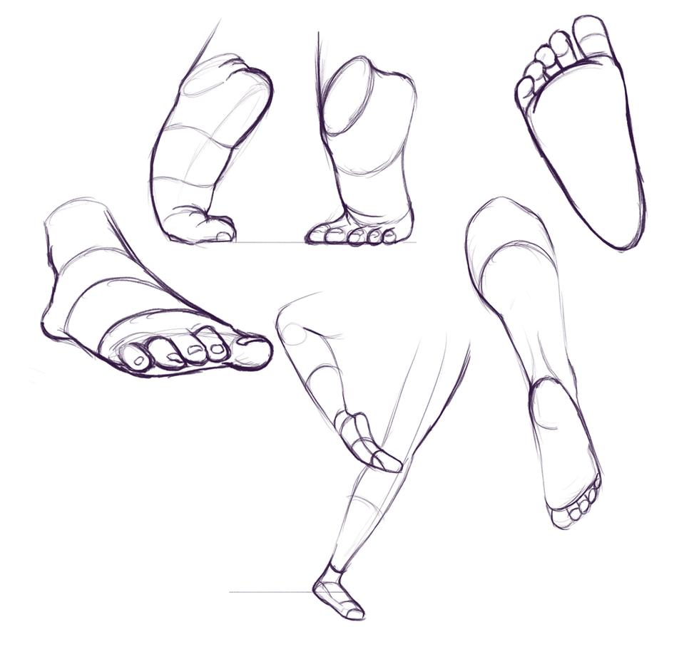 Foot studies.png