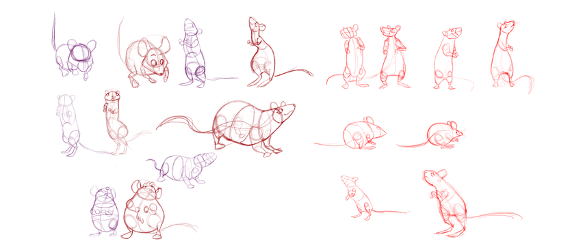 Mouse studies