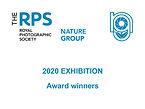 2020 Exhibition Title.jpg