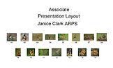 Hanging Plan - Janice Clark ARPS.jpg