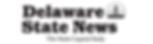 dsn-web-logo.png