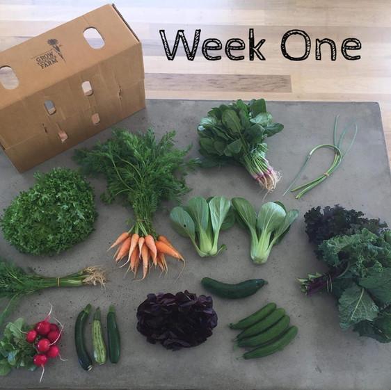 Week One Veggie Box
