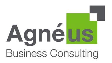 Agneus Business Consulting