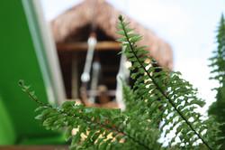 Casinha da Girafa