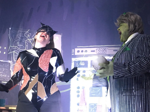 Catwoman and Max Shrek costumes