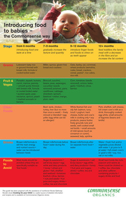 Baby Food Guide - CSO