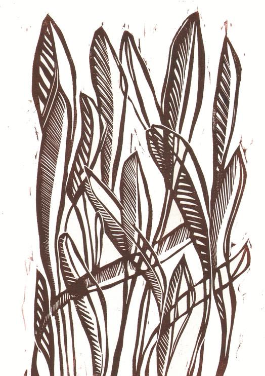 foliage 3