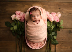 newborn baby girl in pink roses