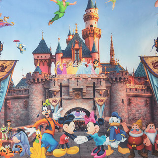 Disney Castle Characters