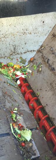 Revalorisation de déchets organiques