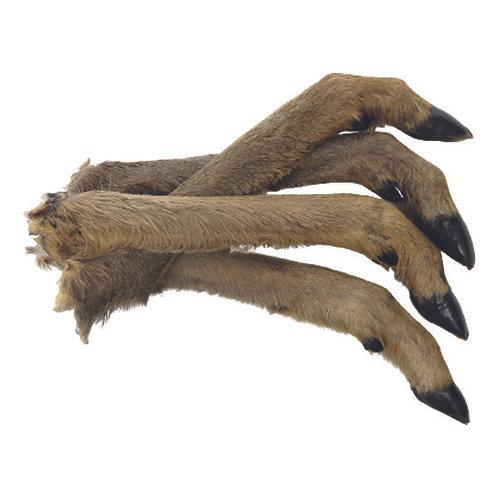 Roe Deer Leg With Fur