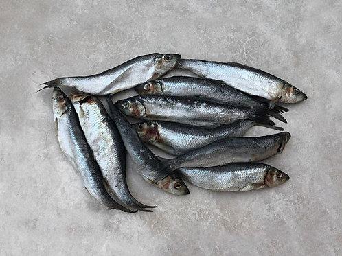 Paleo Ridge  DIY Fish Whole (800g)