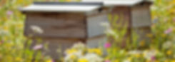 landscape-1466592511-beehives.jpg