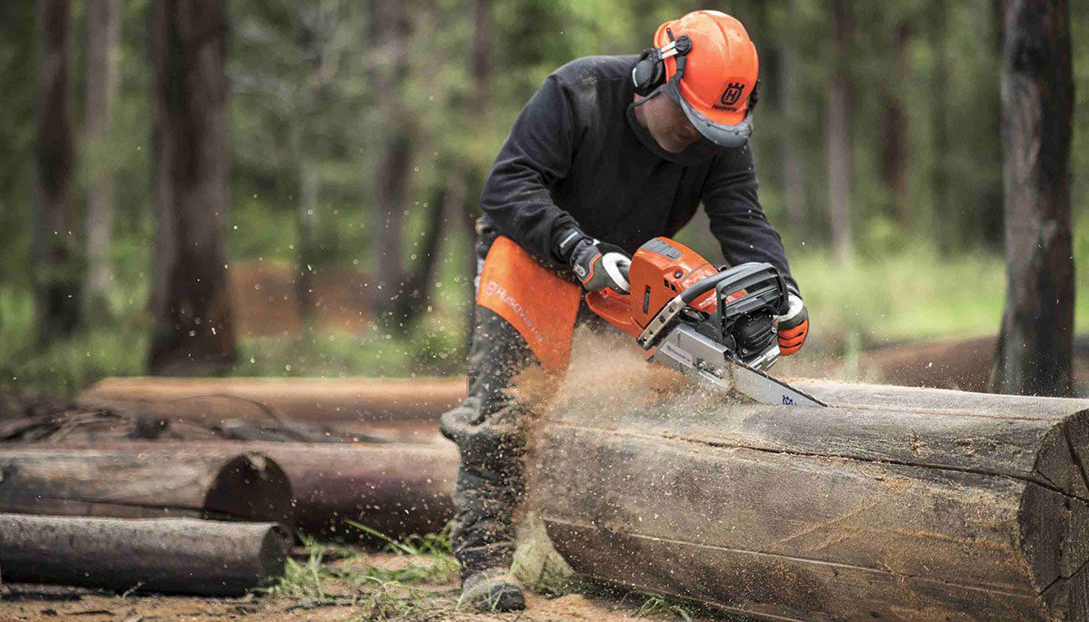 Chainsaw Training Course 16/08/2018