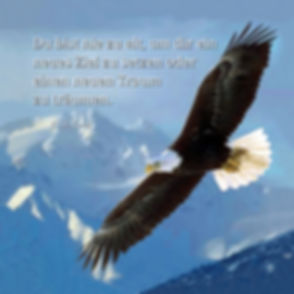 Adler m Spruch.jpg