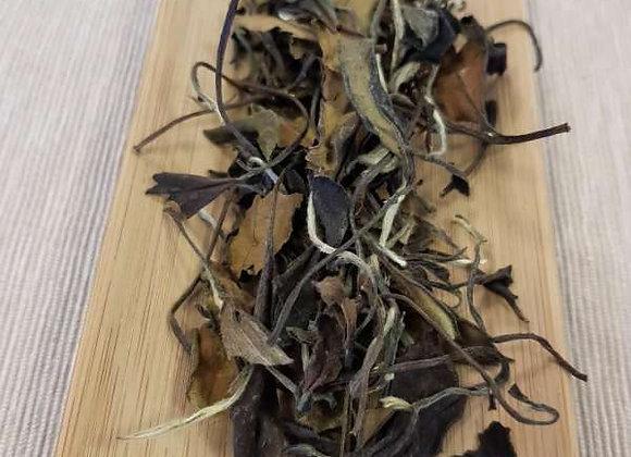 White Tea -- Gongmei