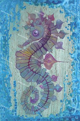 Brine Shrimp Killa