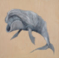 Acrylic on Birch Wood, black whale, natural wood, marine life, Organism