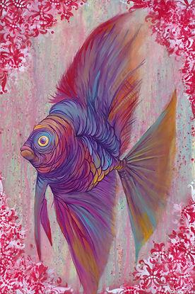Angel fish, mairne biology, illustration, colorful
