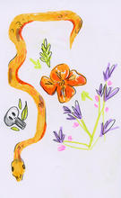 SketchbookPages_SkullSpider_Summer21.jpg