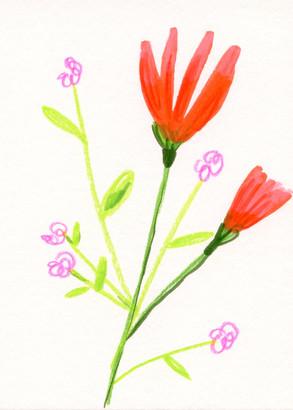 MiniPaintings_Flowers_Summer21.jpg