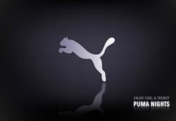 FTV_PUMA_04